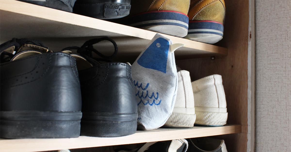 Charco Birdが靴箱でお留守番しています。